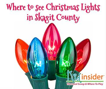 Christmas Lights In Skagit County