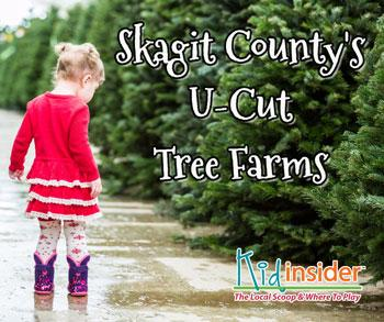 Skagit County U Cut Christmas Tree Farms