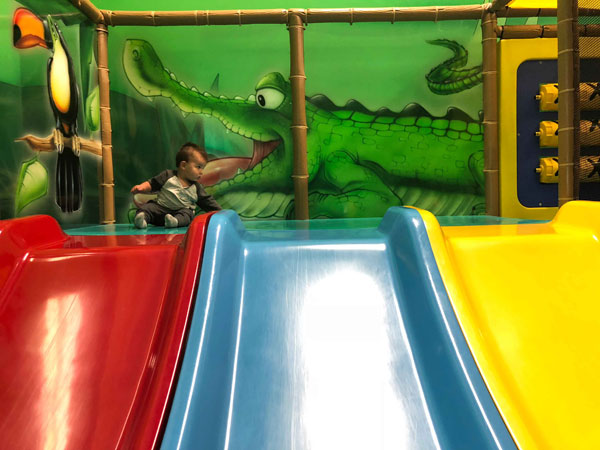 Jungle Playland Mount Vernon Slides